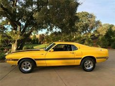 1973 Mustang, Ford Mustang Shelby Cobra, Shelby Car, Mustang Fastback, Mustang Cars, Ford Mustangs, Classic Mustang, Ford Classic Cars, Vintage Mustang