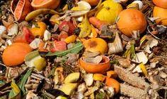 Apps que nos ayudan a no desperdiciar alimentos / Recursos