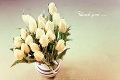 Thanks You..