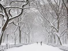 usually i hate the cold but...new york street in winter...