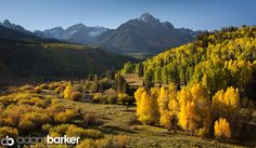 More amazing Fall colors from Elite Immortal Adam Barker