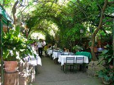 Locanda Montin. Best restaurant in Venice, Italy.