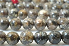 47 pcs of Turritella agate smooth round beads in 8mm