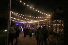 Dancing under the lights wedding reception