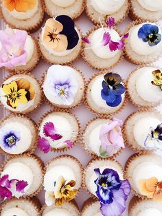 edible flowers on mini bttrcrm cupcakes pansies, violas, dianthus, snapdragon on sustainable bttrcrm Cupcakes Flores, Flower Cupcakes, Mini Cupcakes, Fairy Cupcakes, Wedding Desserts, Wedding Cupcakes, Pretty Cakes, Cute Cakes, Edible Flowers Cake