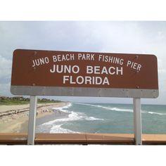 Welcome to Juno Beach Beach  Fishing Pier near Jupiter, Florida