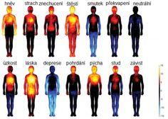 Nová studie ukazuje, jak emoce ovlivňují části lidského těla - Česko Aktuálně | Česko Aktuálně