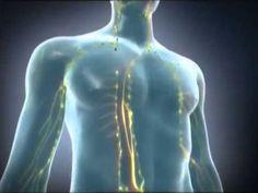 Desintoxique su sistema linfático con estos consejos naturales - e-Consejos