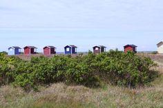 Was wir bisher kennen: die Küste bei Skanör http://www.travelworldonline.de/traveller/die-oeresundbruecke-sehnsuchtsort-auf-dem-weg-nach-kopenhagen/?utm_content=buffer672c7&utm_medium=social&utm_source=pinterest.com&utm_campaign=buffer ... #twosweden #sweden #schweden #scandinavia