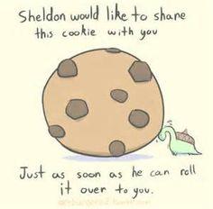 Sheldon the Tiny Dino