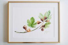 Art - Watercolor Portrait Figs