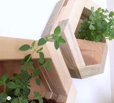 How to make DIY Hexagon Planters, free plans and picture tutorial. Scrap Wood Crafts, Scrap Wood Projects, Diy Pallet Projects, Woodworking Projects Diy, Diy Wood Planters, Diy Planters Outdoor, Planter Boxes, Concrete Block Retaining Wall, Diy Concrete