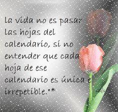 La vida no es pasar las hojas del calendario ,sino entender que cada hoja de ese calendario es única e irrepetible!!