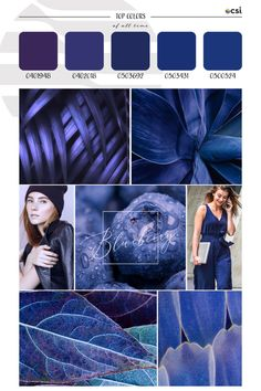 Top ColorWall™ Colors of All Time | Blueberry – eColorWorld Season Colors, Deep Blue, Color Trends, 10 Years, Blueberry, All About Time, This Is Us, That Look, Seasons
