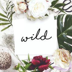 Wild flatlay, флетлай, раскладки, фотодля инстаграма, шаблоны, мокапы, инстаграм, для инстаграма, instagram, inspiration