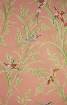 Augustine Wallpaper A printed wallpaper on a pink background featuring colourful birds amongst  wildflowers and plants.