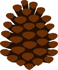 pine cones pine cone and pine needles free clip art pine cone rh pinterest com pine cone clip art images pinecone clipart black and white