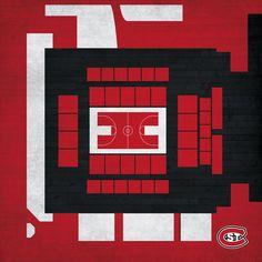 "St. Cloud State Huskies 12"" x 12"" Fine Art Aerial Arena View - $49.99"