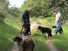 Busy day on Orcutt trail