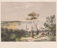 The Guardian First Book Interview with Lucy Treloar (Sep An 1846 engraving of a scene on the Coorong, near Lake Albert. The Guardian, Interview, Salt, Scene, Book, Painting, Painting Art, Salts, Paintings