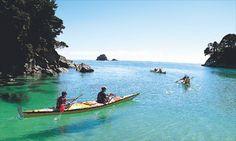 Sea kayaking. Can we please?