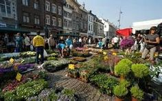 Maastricht is a city of markets if you visit