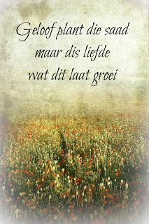 geloof plant d saad Christ Quotes, Biblical Quotes, Wisdom Quotes, Bible Quotes, Qoutes, Uplifting Christian Quotes, Afrikaanse Quotes, Goeie More, Sweet Love Quotes