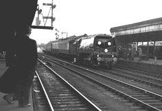 Live Steam Locomotive, Southern Trains, Southern Railways, Merchant Navy, Bullen, Battle Of Britain, Brompton, Winston Churchill, Digital Magazine