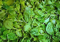 Dušený špenát z kostky zmrazeného protlaku. Chutná krmě v krátkém čase | | MAKOVÁ PANENKA Spinach Leaves, Daughters Of Charity, Poster Print, Mean Green, Weight Loss Tips, Farmer, Vegetables, Vegetarian Diets