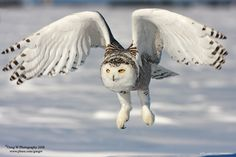 Beautiful pic in flight