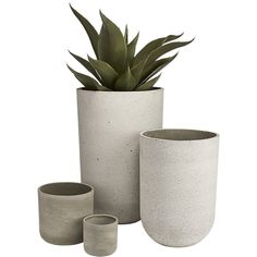 Shop Seminyak Taupe Planter Raw material of the city cements foundation for lush growth. Planter brings industrial vibes to the balcony/patio/porch.