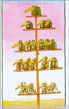 Organization_Chart_Birds_Version