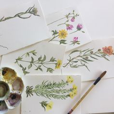 Real watercolor handpainted wild flowers 🌺  I was very happy that weekend painting from real and breathing clean air in the mountains!
