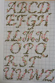 784.JPG (533×800)