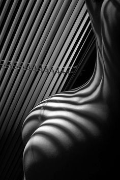 blinds as neon Neon Noir, Erotic Photography, Conceptual Photography, Laura Lee, Op Art, Light And Shadow, Erotic Art, Belle Photo, Body Painting