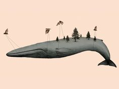 Family calendar by Gabriella Barouch. Whale carrues by birds with pine trees Cgi, Pomes, Whale Art, Wale, Decoration, Art Photography, Illustration Art, Animal Illustrations, Creatures