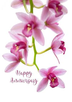 Again you are faced with that blank intimidating white Area within the marriage ceremony anniversary greeting card. I am confident you. Wedding Anniversary Greeting Cards, Marriage Anniversary, Invitation Cards, Invitations, Try To Remember, Orchids, Card Designs, Confident, Boat
