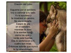 Oración del Lobo Sígueme por el sendero, caminaré a tu lado. Yo te ayudaré y te mostraré el camino. No voy a dejarte. Estaré de pie en el sendero, mientras te miro. Si te sientes solo/a cierra los ... Animals, Poems, Animales, Animaux, Animal, Dieren, Animais