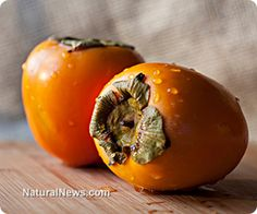 """""""FRUIT OF THE GODS"""" persimmons HEALS CANCER, HEART DISEASE, DIABETES & MORE. Containing abundant fiber, antioxidants and protective compounds, persimmon packs a serious nutritional punch. Easing a wide variety of health conditions, this fruit has long been held in high esteem by Traditional Chinese Medicine."""