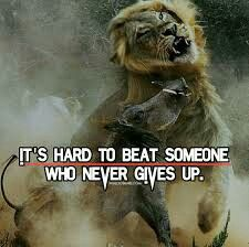 It's hard to beat someone who never gives up.