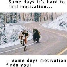 Somedays Motivation Finds You funny life quote lol humor funny pictures funny pics funny images really funny pictures funny pictures and images best funny pictures Rage Comic, Frases Humor, Humor Humour, Gym Humor, Hard To Find, Life Advice, Laugh Out Loud, The Funny, Decir No