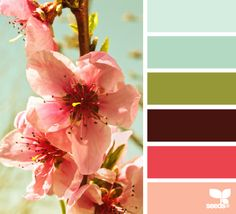 color palettes, blue green brown, color schemes, spring colors, blossom hue