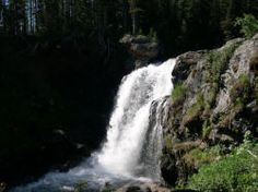Plan a trip to Yellowstone.great resource