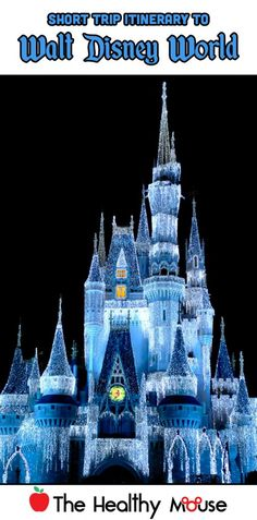 Short trip itinerary for Walt Disney World