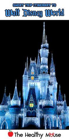 Short trip itinerary for Walt Disney World