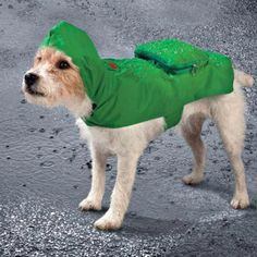 Dog Raincoats Dog Raincoat Pet Waterproof Detachable Rain Jacket Dogs Water Resistant Clothes Floral Patterns Trench Coat For Rainy Day Pure White And Translucent