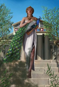 Hera was the wife and one of three sisters of Zeus, Her chief function was as the goddess of women and marriage. Her counterpart in the religion of ancient Rome was Juno. The cow and the peacock were sacred to her. Hera's mother was Rhea and her father Cronus.