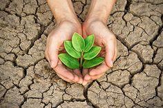 Curso Grátis de Impactos Ambientais