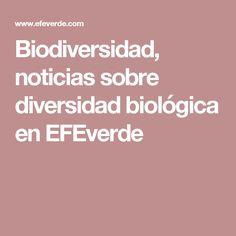 Biodiversidad, noticias sobre diversidad biológica en EFEverde