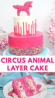 Circus Animal Layer Cake Video This Circus Animal Layer Cake is big and bright, with funfetti cake layers, chopped up circus animal cookies inside, and a cool upside-down ganache drip decoration! Funfetti Kuchen, Funfetti Cake, Pastel Funfetti, Mini Cakes, Cupcake Cakes, Baby Cakes, Shoe Cakes, Cake Decorating Videos, Decorating Tips
